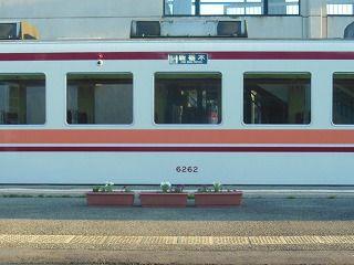 DSCN7386