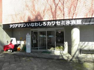 DSCN0599