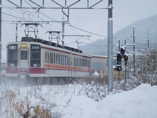 DSCN6659