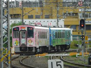 DSCN7990