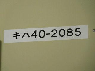 DSCN5567