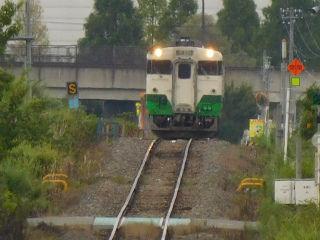 DSCN8804