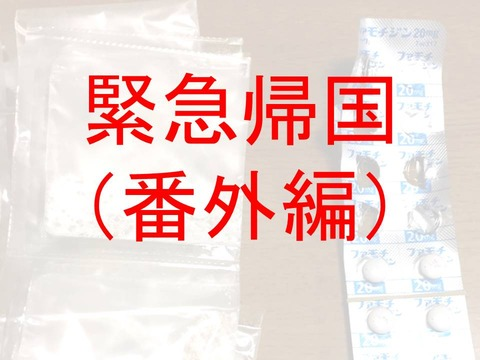 緊急帰国前夜7(番外編)