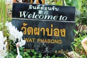 タイ チェンマイ WAT PHABONG (0)