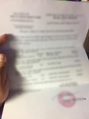 例の「ビザ発行証明書」。ぼかしてます。