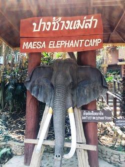 エレファントキャンプ MAE SA ELEPHANT CAMP