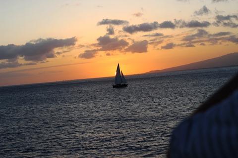 ハワイ 新婚旅行 モアナサーフライダー ©アジアしあわせ特急 (8)