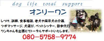 20130608101658337.jpg