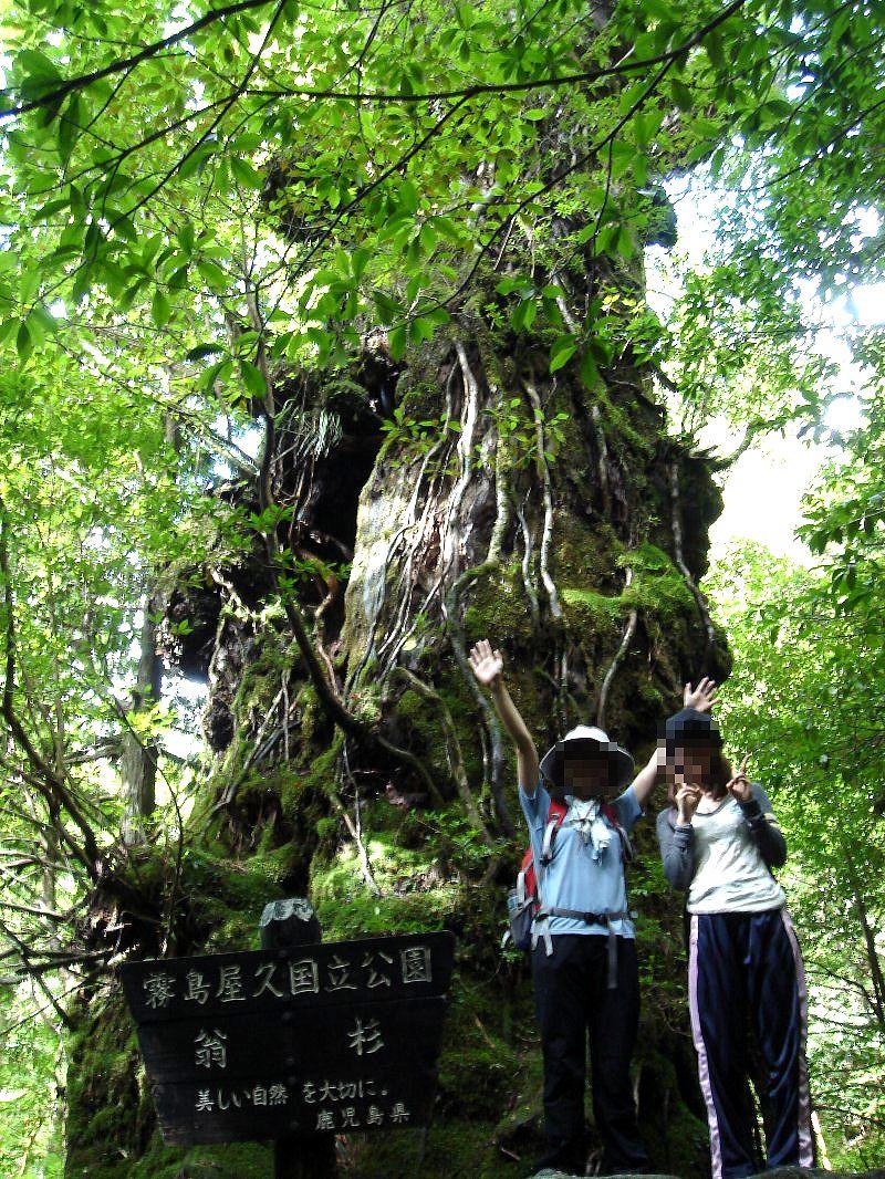 101009-04yakushima