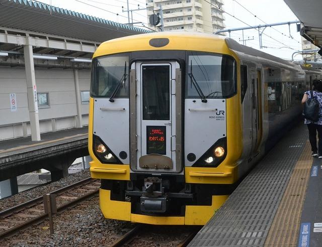 uchibo8