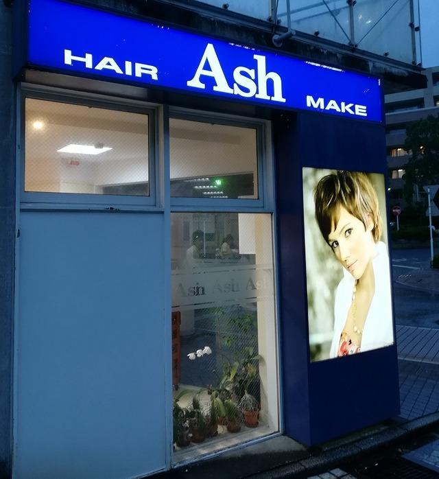 ash11