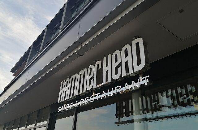 hammerhead6