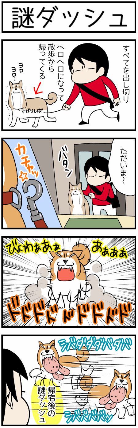 20170924謎ダッシュ1