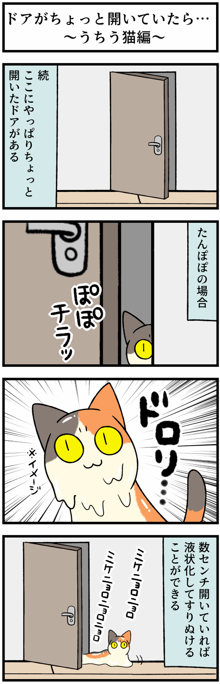 20210730犬猫とドア2