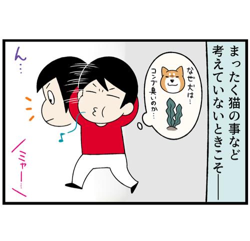 IMG_5241