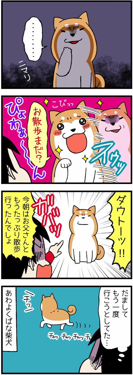 20161129欺く柴犬2