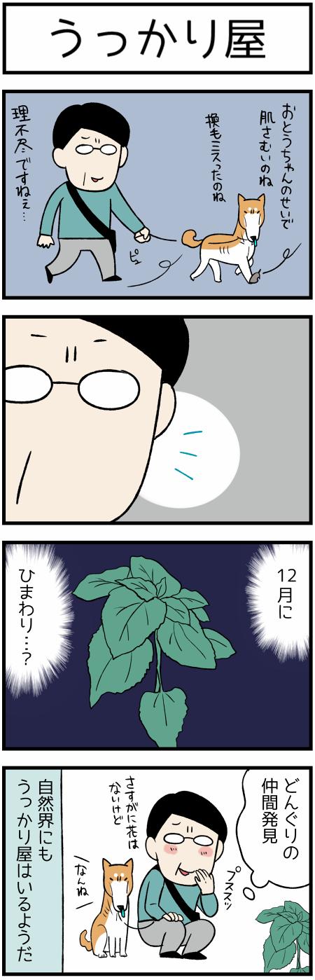 20181209うっかり1