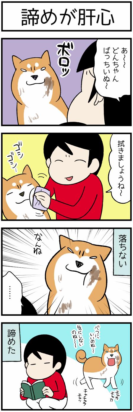 20190808諦め1