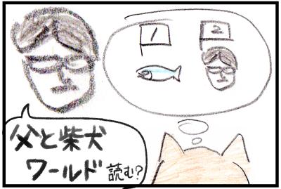 父と柴犬ワールドシリーズ