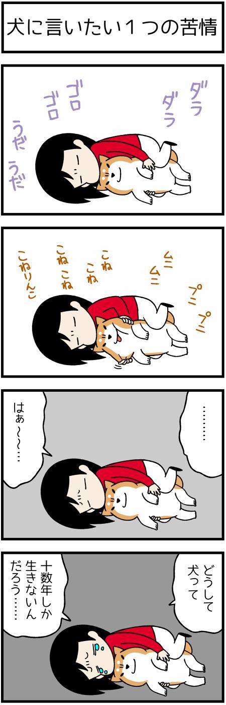 201706161つの苦情1