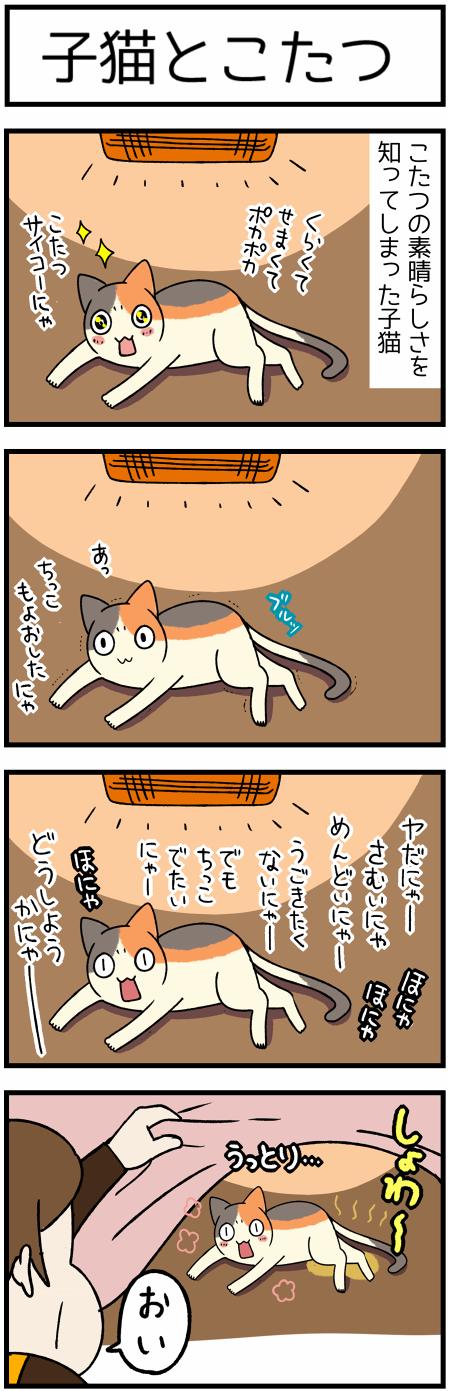 20200117子猫と炬こたつ1