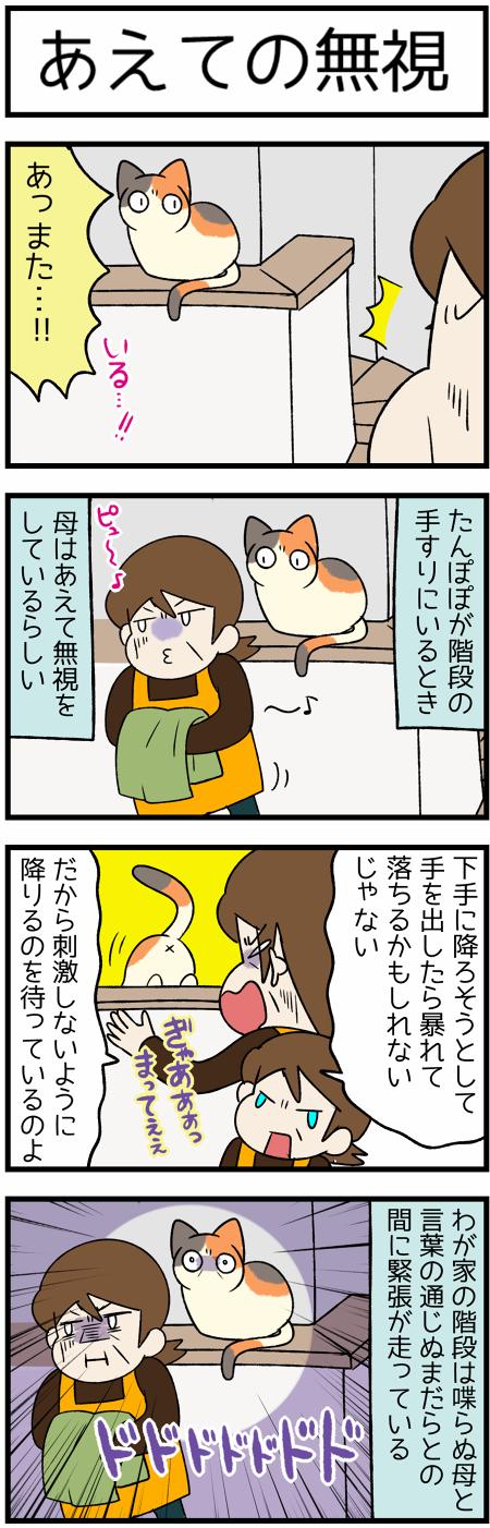 20210122母と階段の猫2