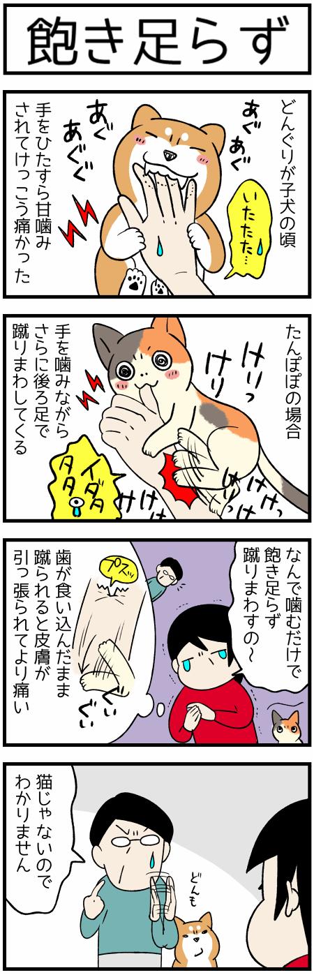 20191021蹴り1