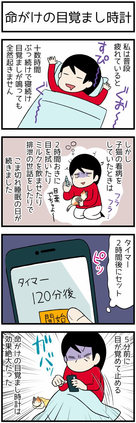 20190824目覚まし1
