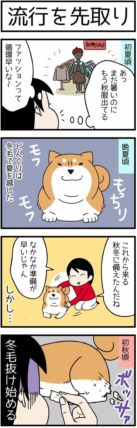 20171004先取り1