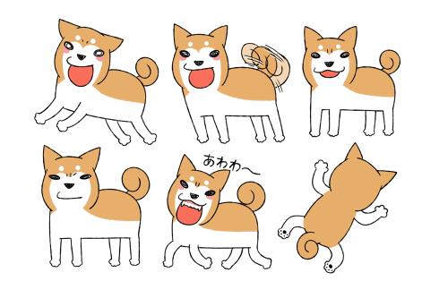 柴犬どんぐりヘッダー素材1.png