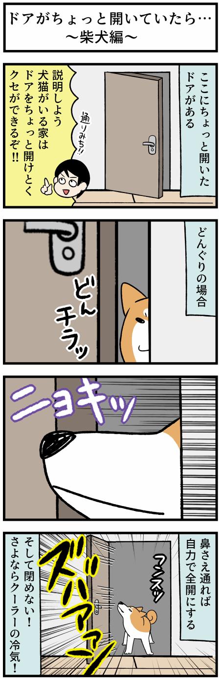 20210730犬猫とドア1