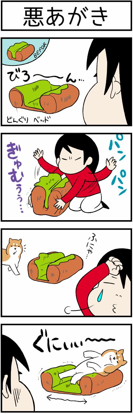 20190311悪あがき1