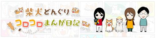 shibainudonguri-2600x640