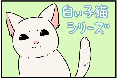 白い子猫シリーズ