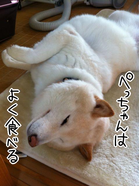 qjmynxt5