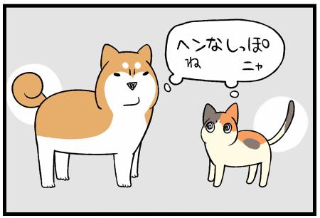 20191027しっぽ2