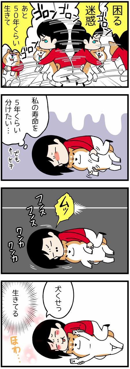201706161つの苦情2