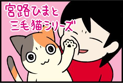 宮路ひまと三毛猫シリーズ