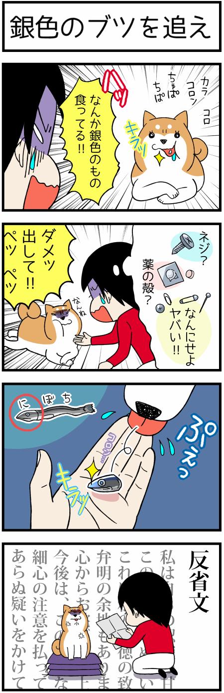 20170527食べちゃダメ1