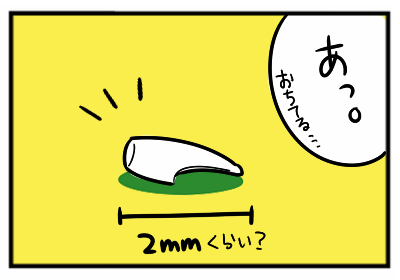 乳歯4.png