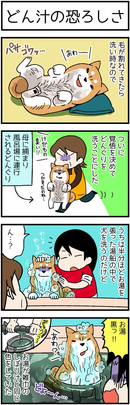 170318犬洗い1