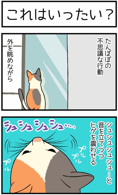 20191204ぷるぷる1