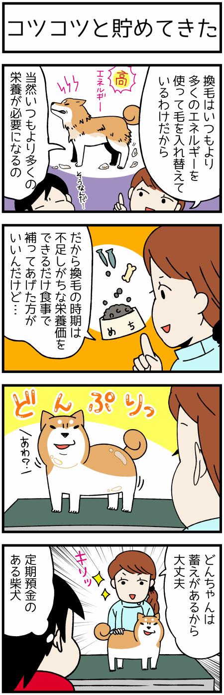 20170424たくわえ1