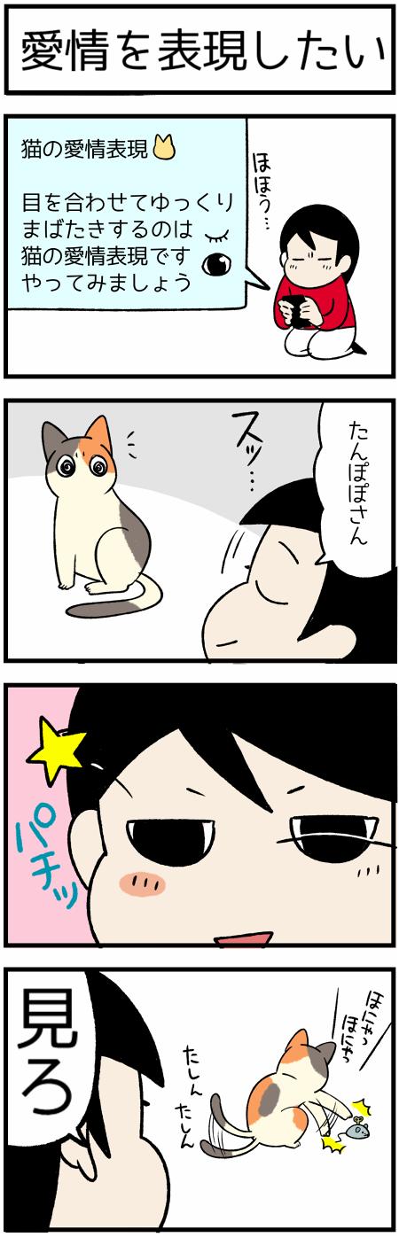 20191025まばたき1
