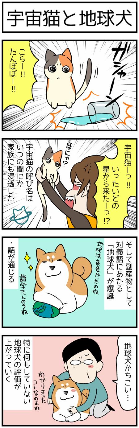 20191117地球犬1