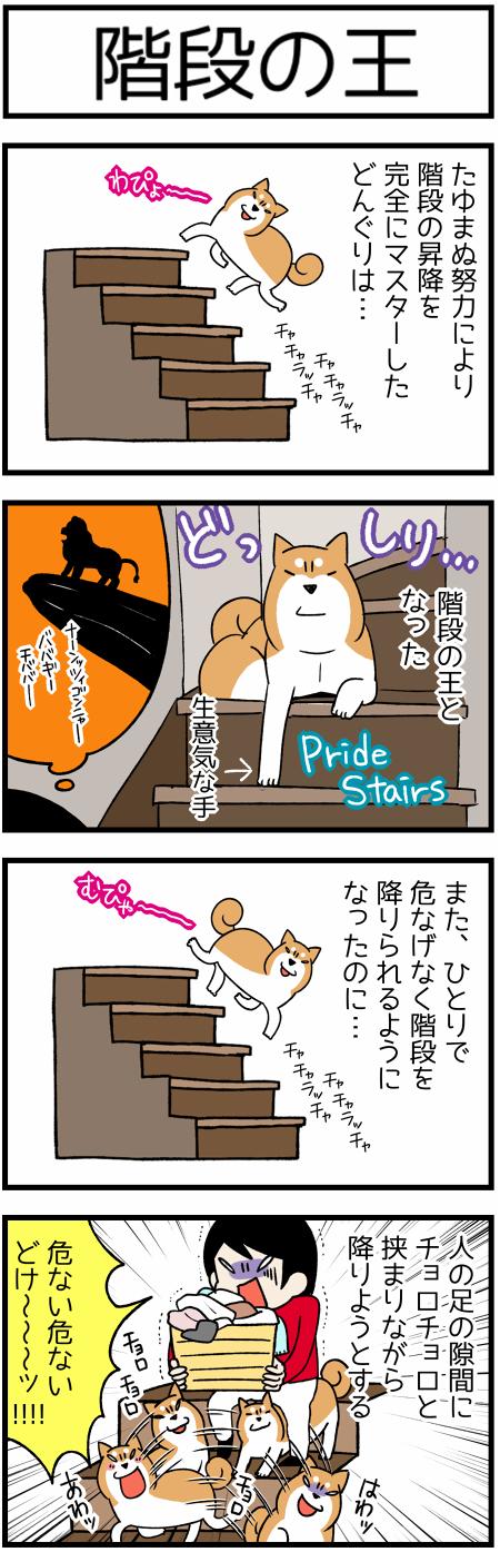 20170802階段の王1