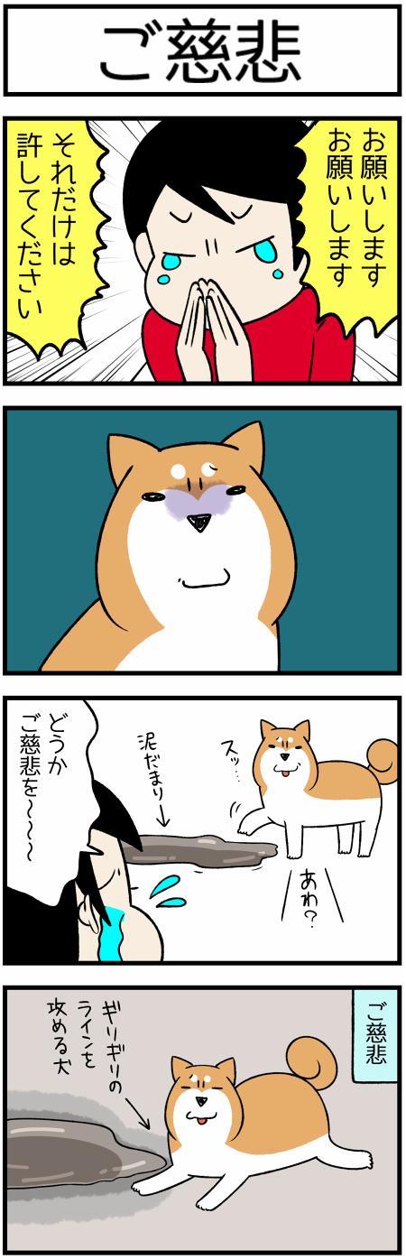 20180609ご慈悲1