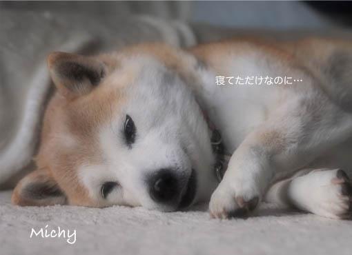 20日ブログ3.jpg