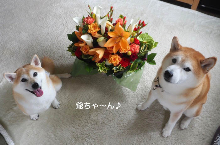 18日夕ブログ11