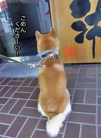 30日ブログ20.jpg
